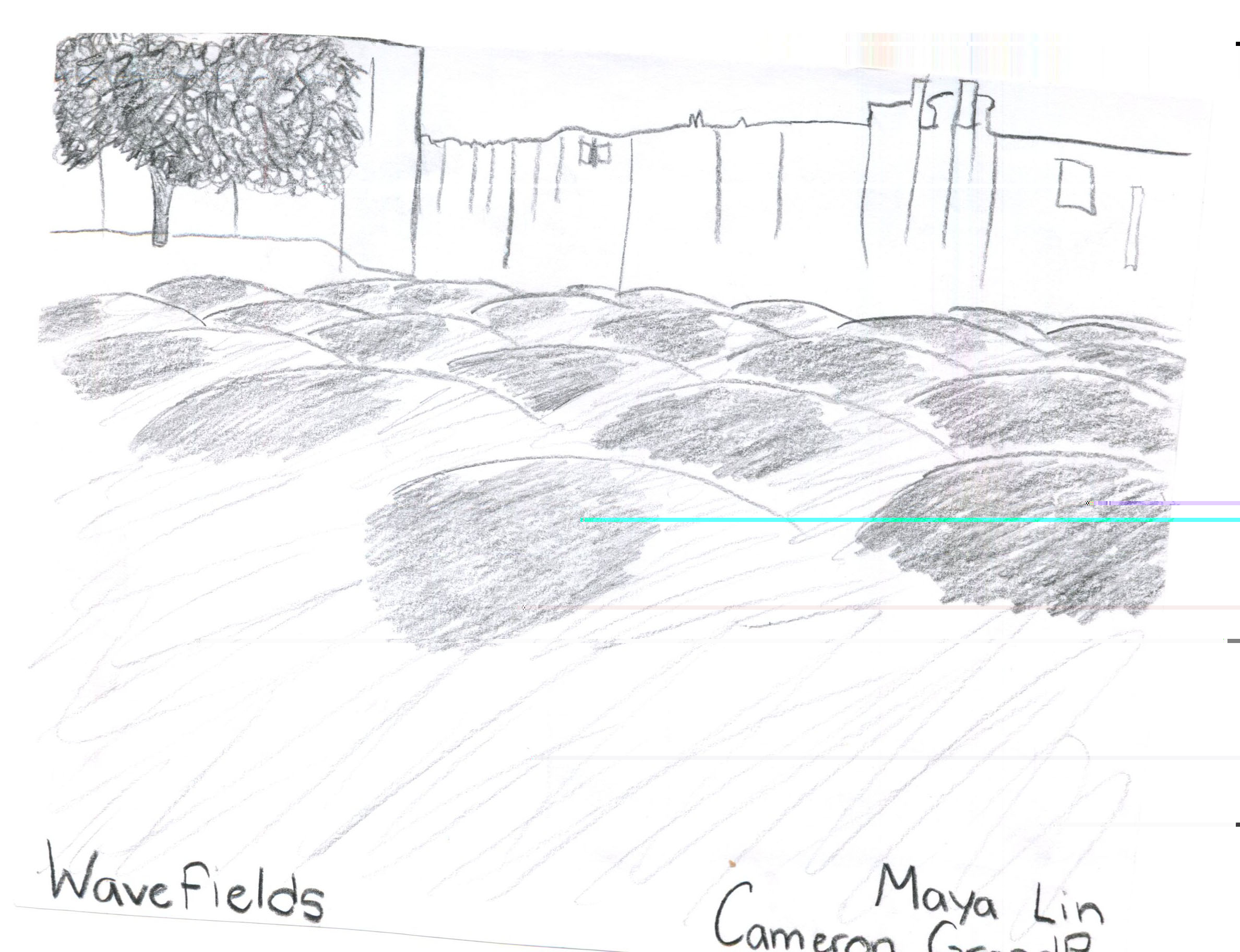Maya Lin Drawing?1352341199978